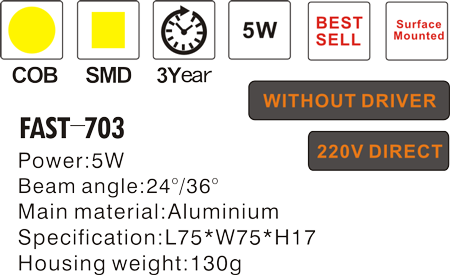 FAST-703-.png