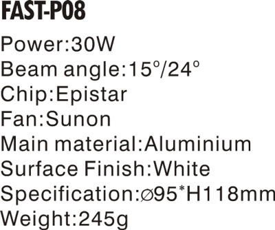 FAST-P08- (2).png