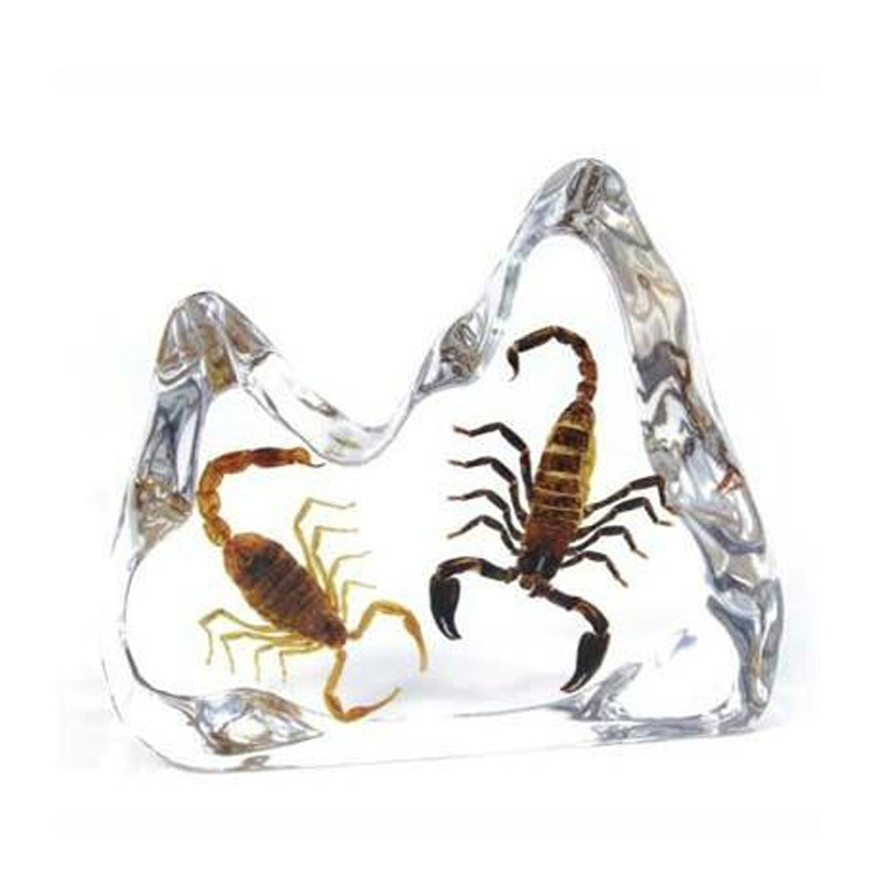 Lucite Resin Scorpion Paperweight