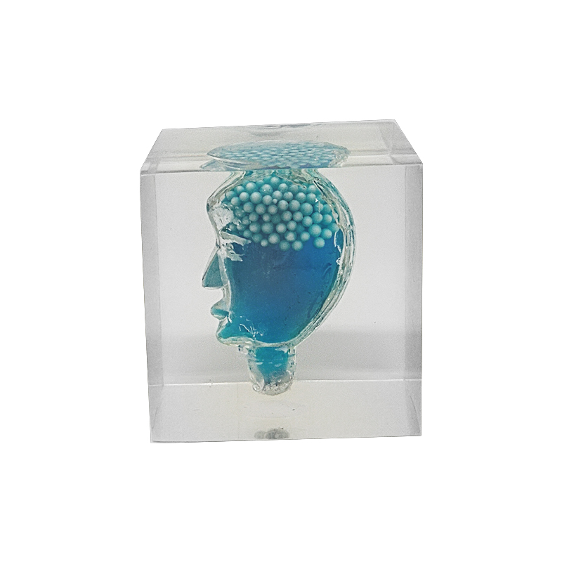 Clear resin blue liquid stomach embedded paperweight