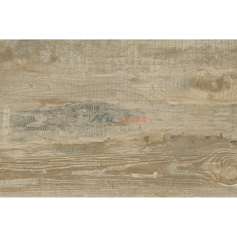 雅典木纹NGM6910P-600X900