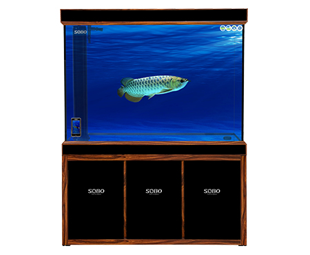 Infinity Fish Tank - SHL Series Filter