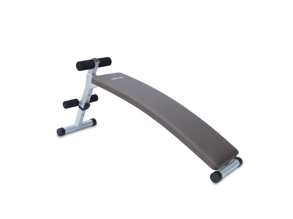 FC6010 Curve Sit-up Bench