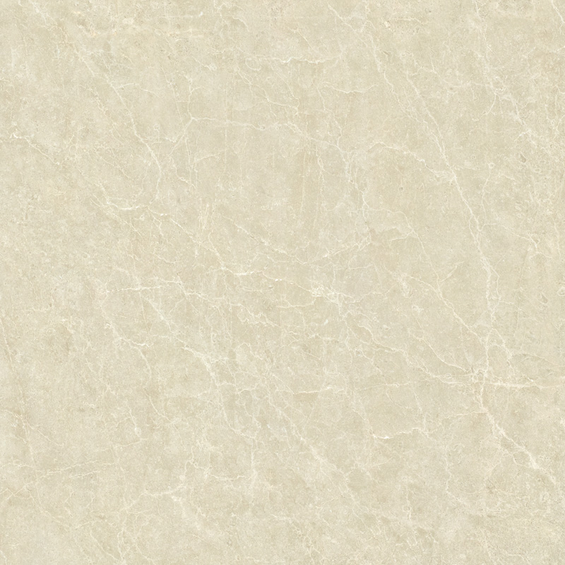 TLD08331TG 金地米黄