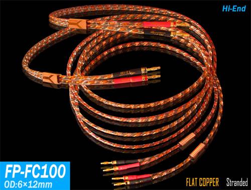 FP-FC100