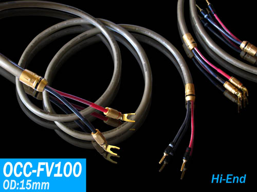 OCC-FV100