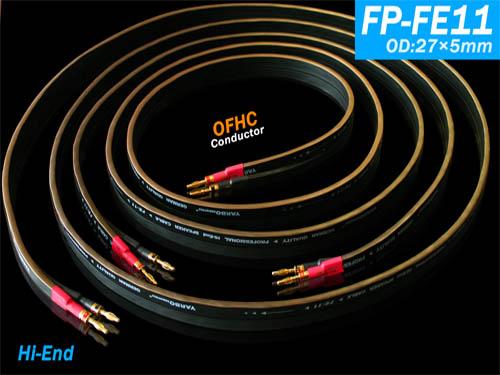 FP-FE11