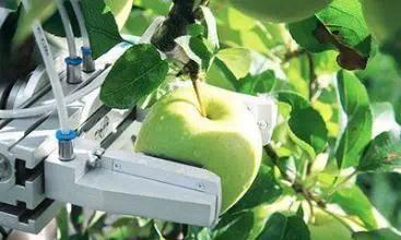 AI赋能于农业,优势体现在哪里?