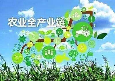 宝秤助力大数据共享,构建农业生态链