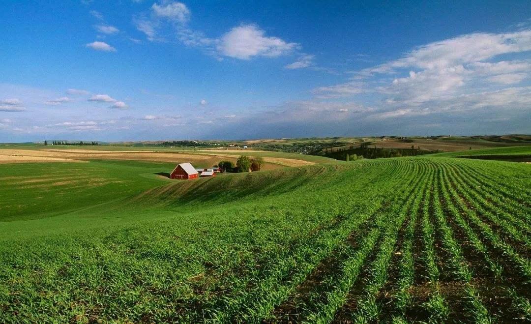 2020年农资行业发展趋势预测分析