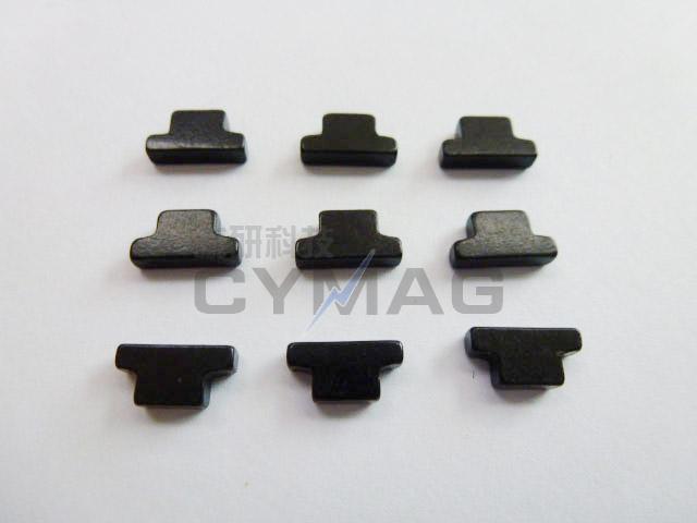 异型钕铁硼强磁-P1010492