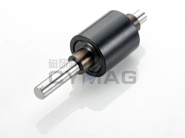 磁体组件5V8E5018