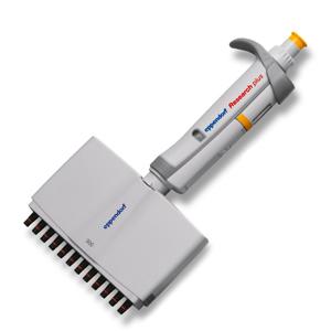 Eppendorf-Research-plus十二道可调移液器