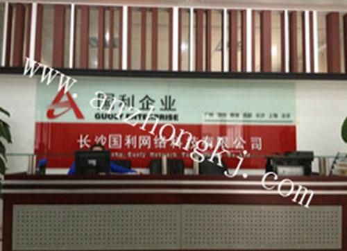 长沙金国利信息机房改造工程