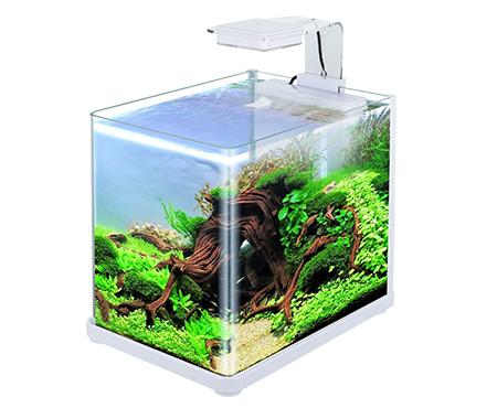 超白水草缸