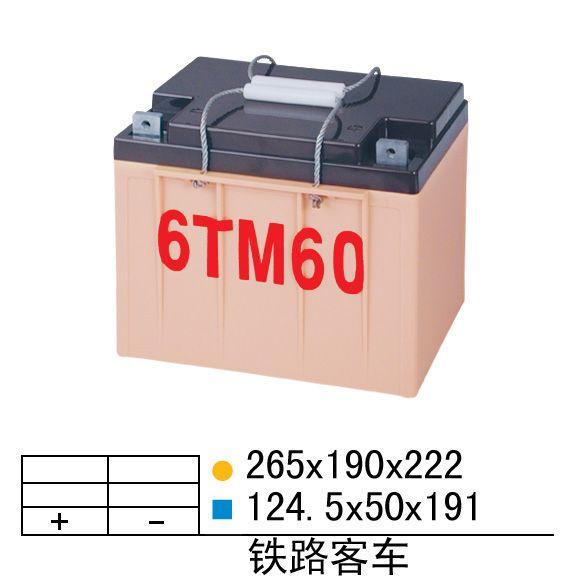 6TM60
