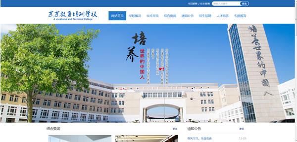 高级中学网站模板T1110.jpg