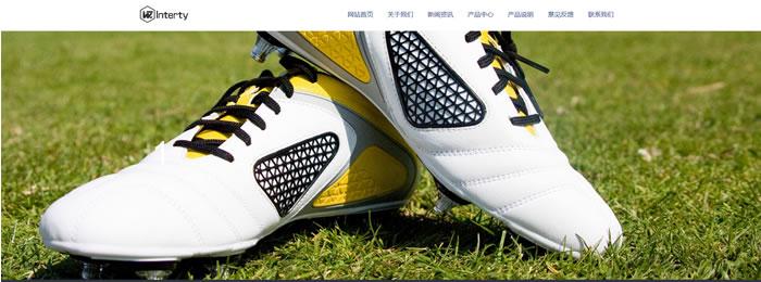 鞋帽网站模板T2510.jpg