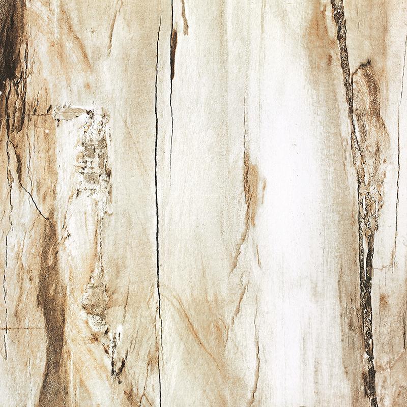 木化石FP88A92
