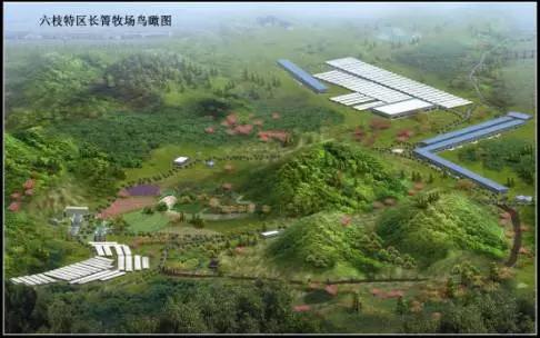 CCTV7-每日农经 贵州百灵产业化精准扶贫再成焦点