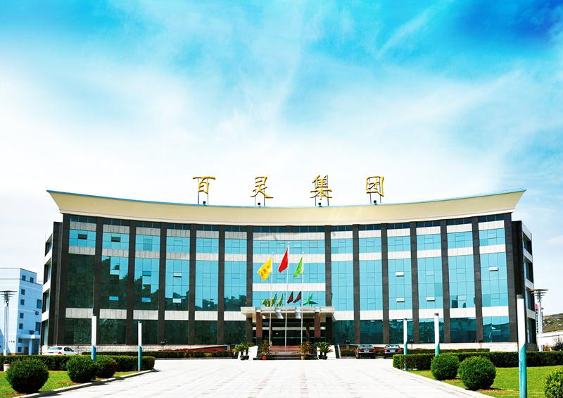 贵州百灵董事长姜伟:多个在研项目有望成产品线重要补充