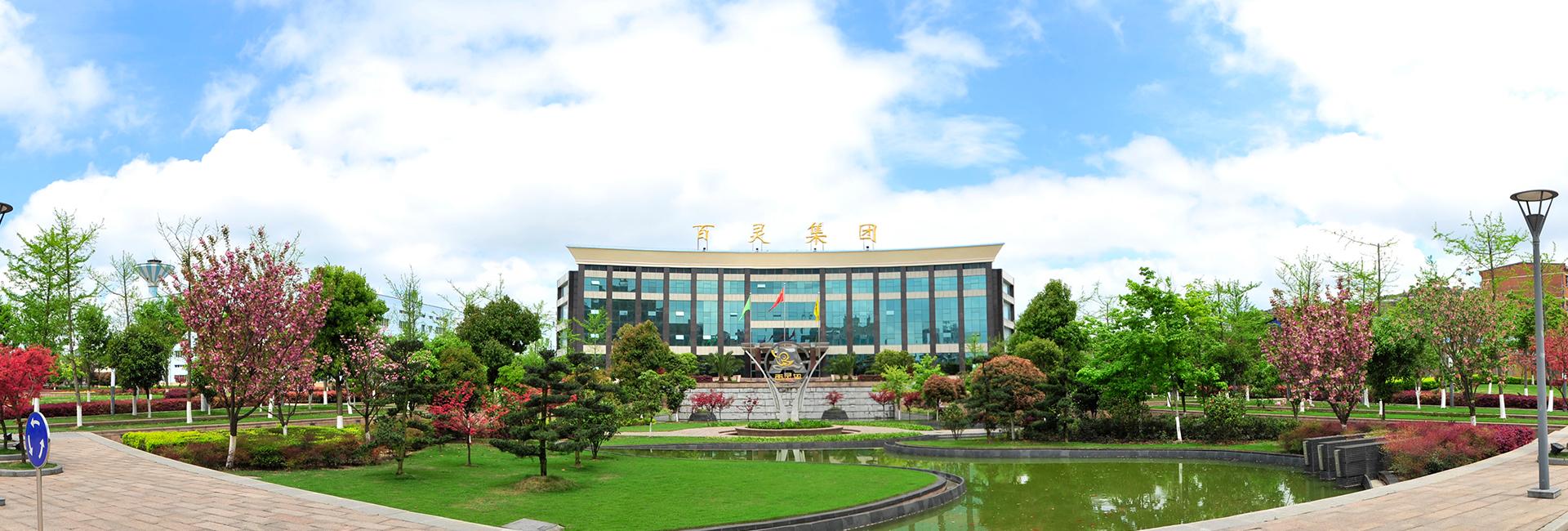 贵州百灵36个品种54个批文入选新版国家基药目录 市场推广有望加速
