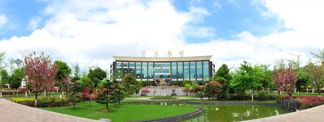 """贵州百灵拟投资5.98亿建设""""前提取三车间及配套工程项目"""""""