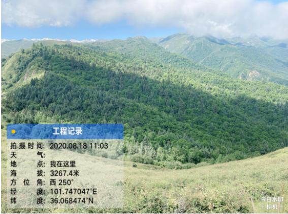 喜讯!青海分公司获尖扎县审计局表扬信