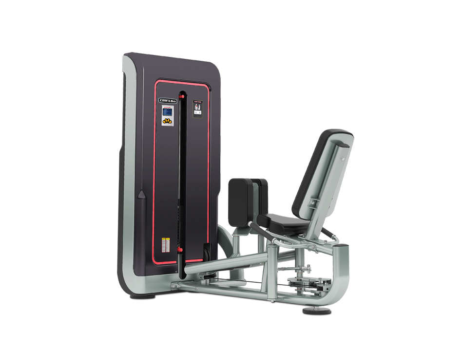 GS317 Abductor & Adductor