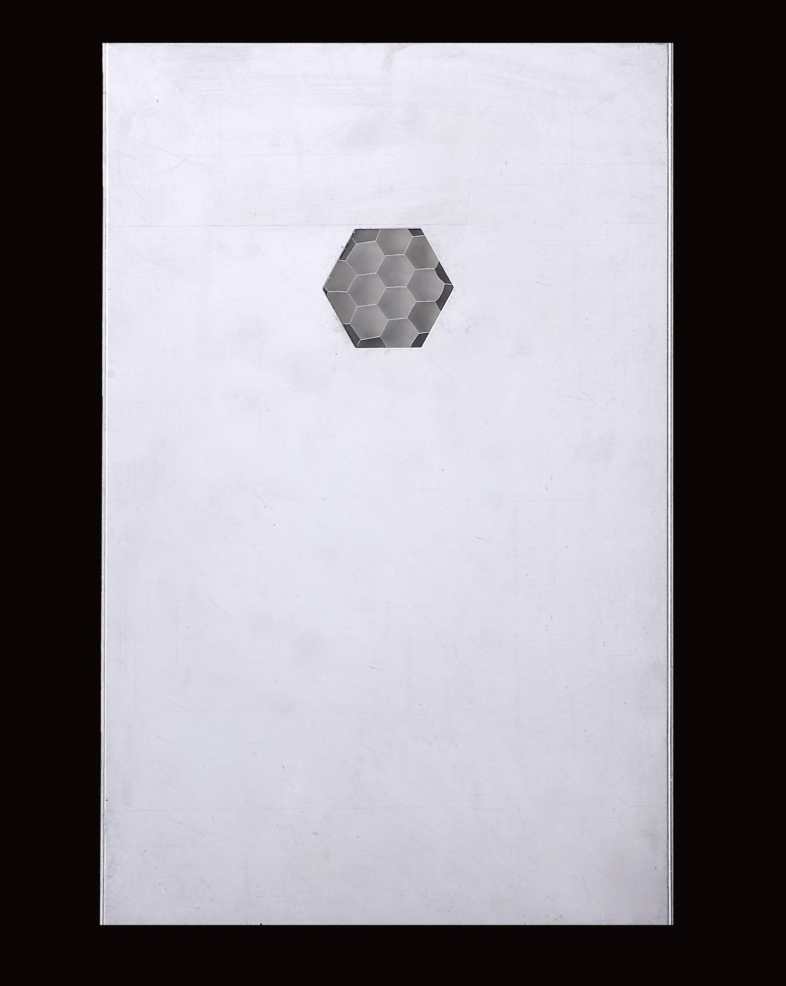 蜂窩芯鋁單板