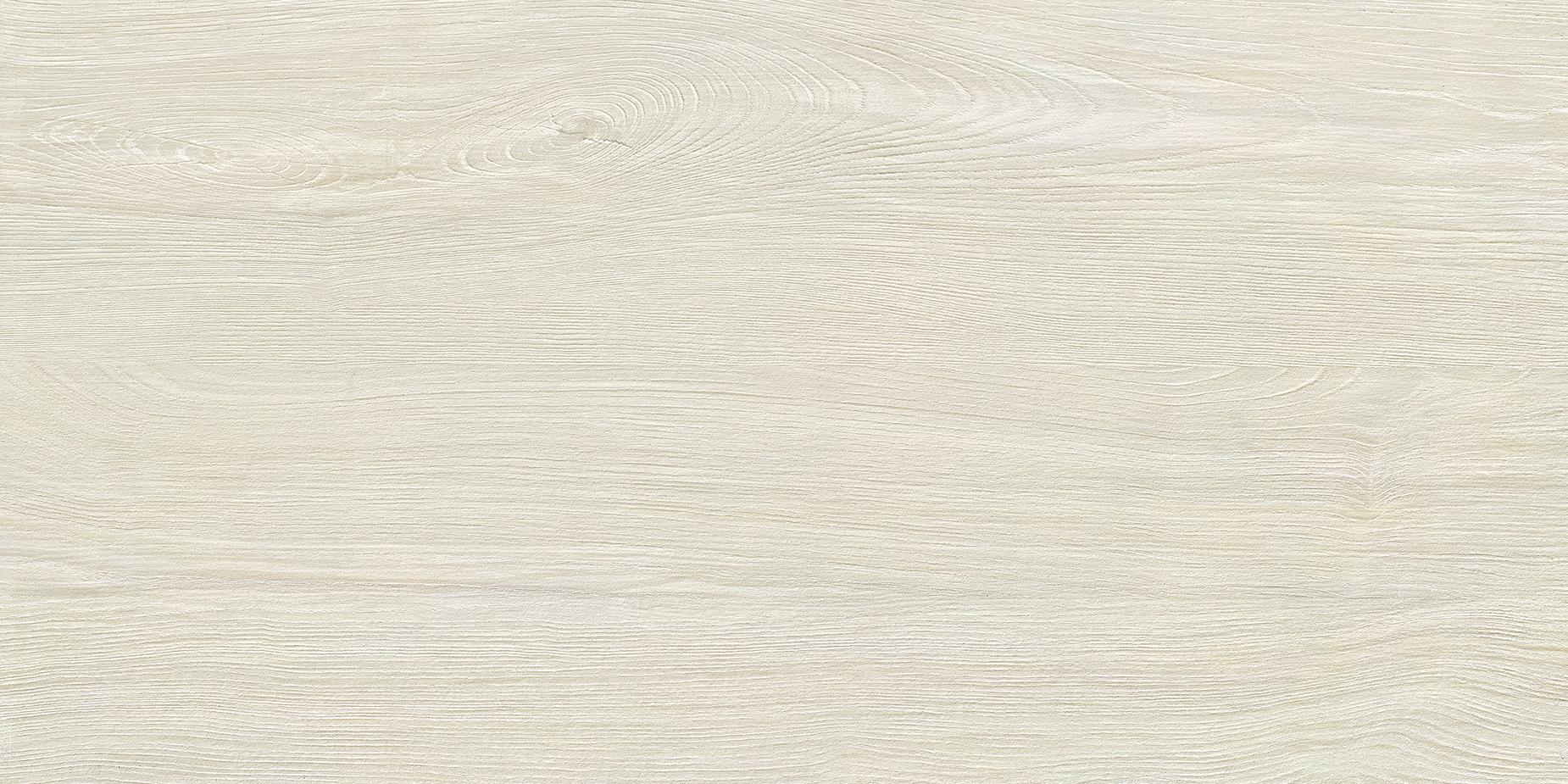 TSD62082 西洋杉木