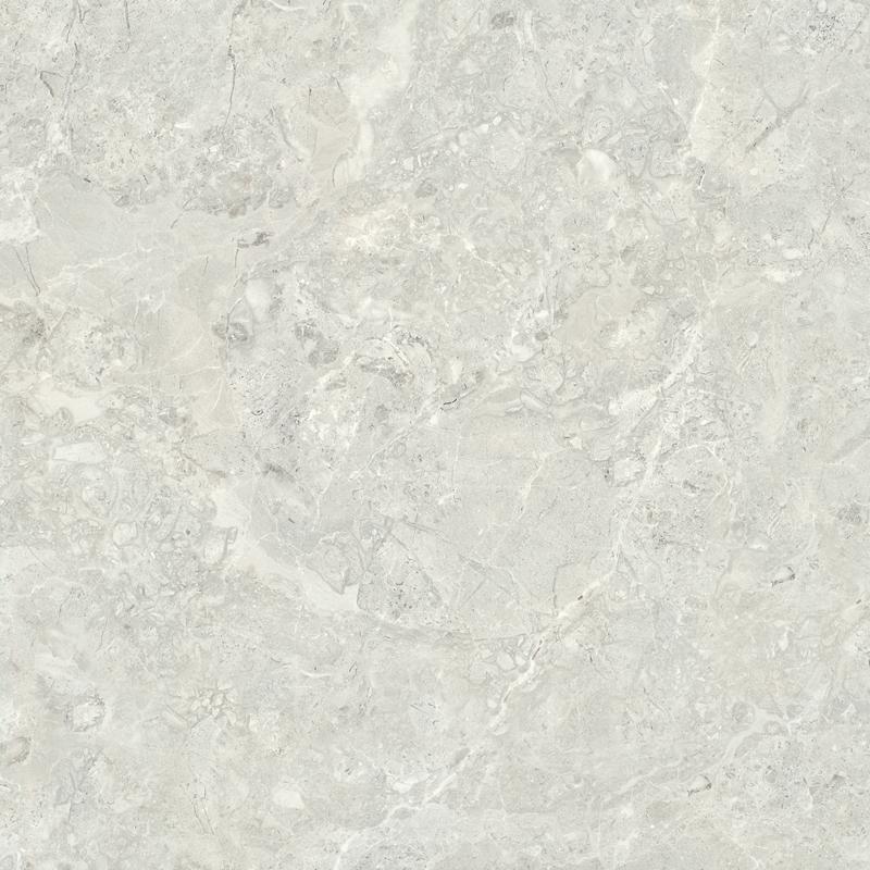 TLD08822 貝沙雲石