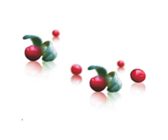 北极越橘籽油RED ALFA Lingonberry Seed Oil