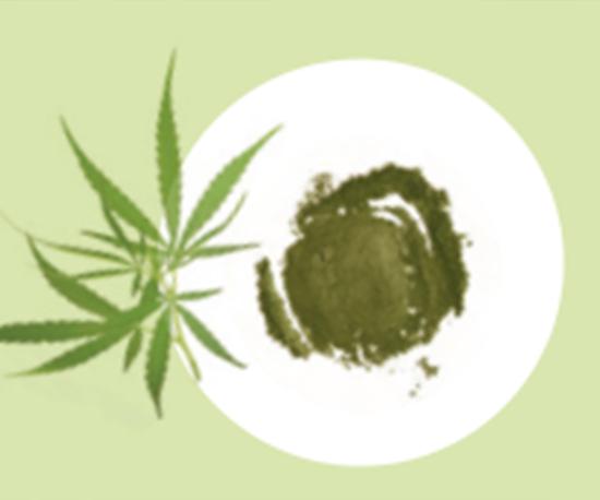 NioSkin™ MedCan 超弹性大麻提取物