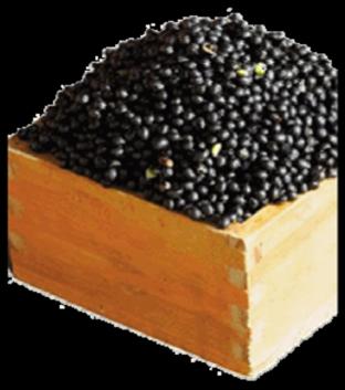 黑豆异黄酮 Radvon