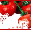 茄红素强抗氧化精华 HYDROPOM