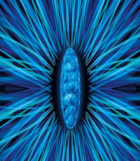排毒亮肤回春藻-DETOXONDRIA