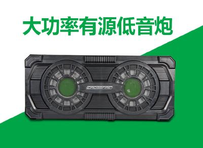 CF-AM152D双十寸 有源低音超薄炮