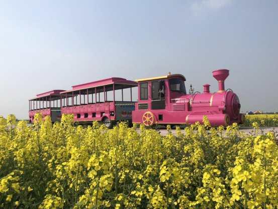 48座、52座电动小火车