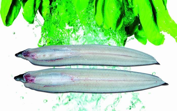 东龙烤鳗--有头冻鳗
