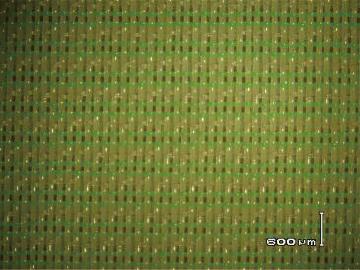 36系列16綜三層聚酯成形網