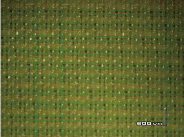 56系列16綜三層聚酯成形網