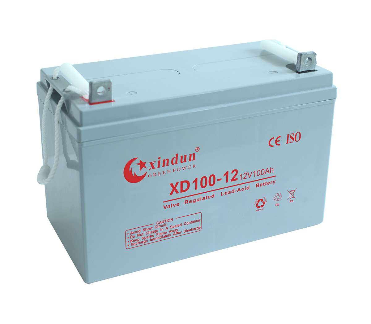 XD100-12 Battery (12V100Ah-Short)