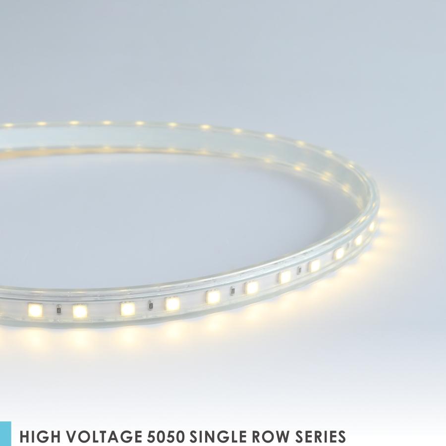 HIGH VOLTAGE 5050 SINGLE ROW SERIES