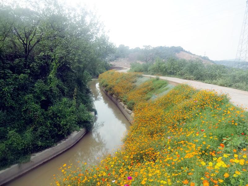 霞湾新桥低排渠重金属污染治理工程