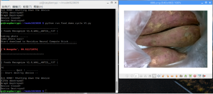 Embedded food identification module