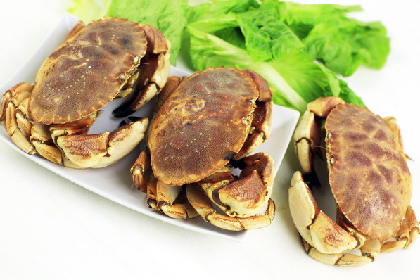 面包蟹(实时批发价格咨询客服13163761175)