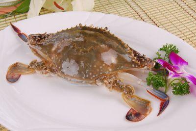 梭子蟹(实时批发价格咨询客服13163761175)