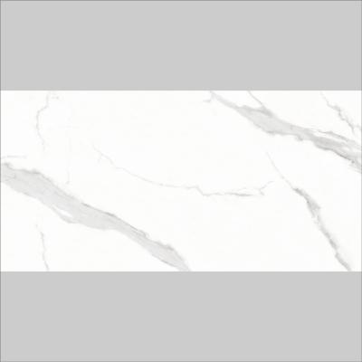 RYTB28610F土耳其鱼肚白