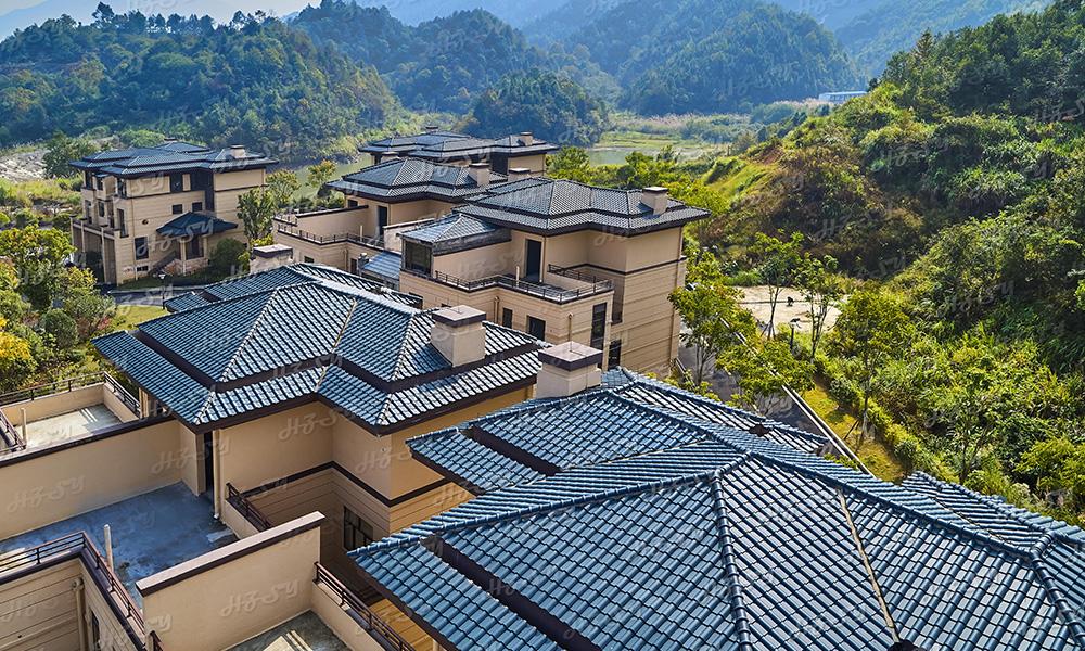 江西——修水溫泉小鎮